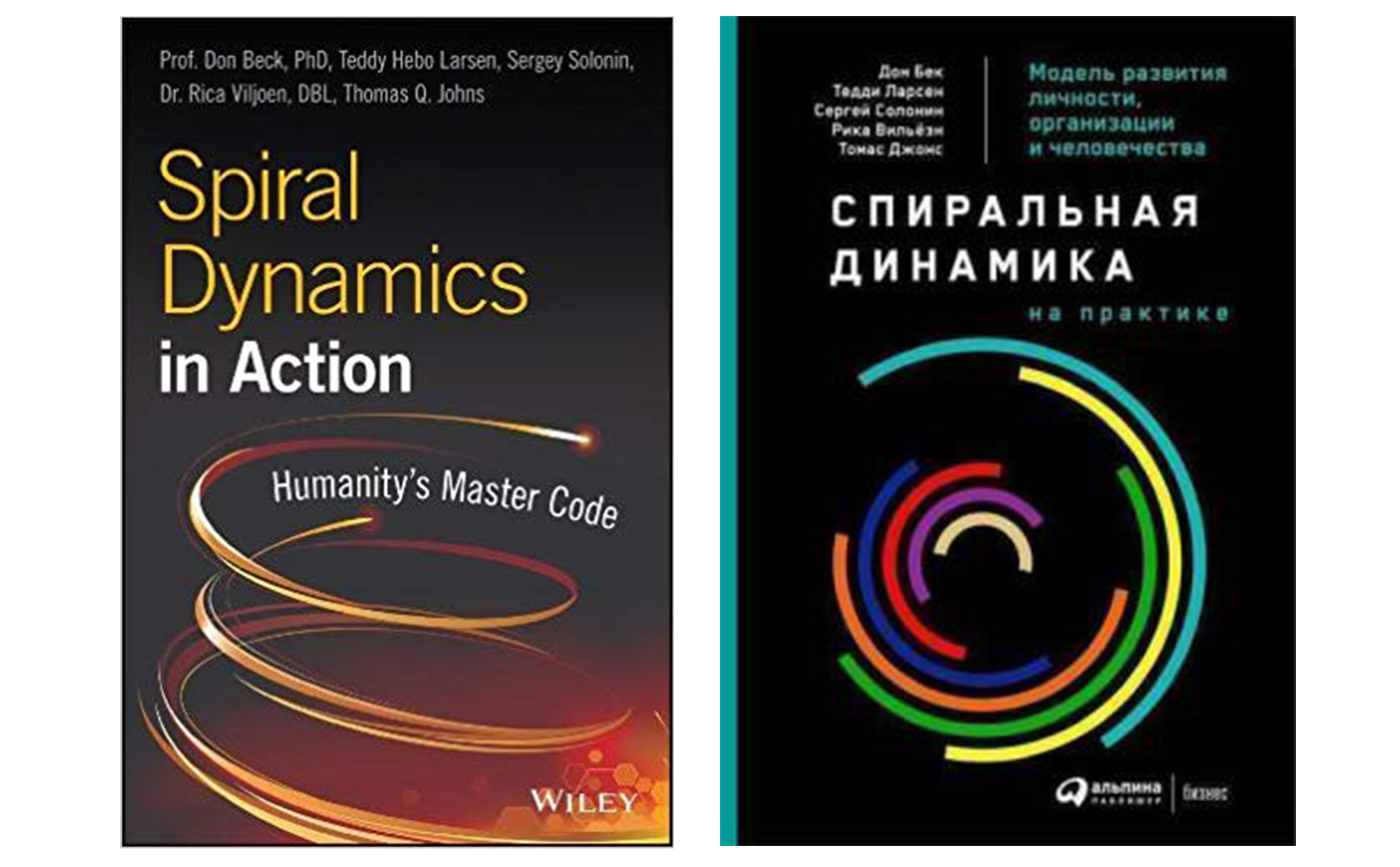 spiral dynamics in action humanitys master code
